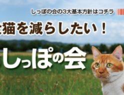 HOKKAIDOしっぽの会に支援